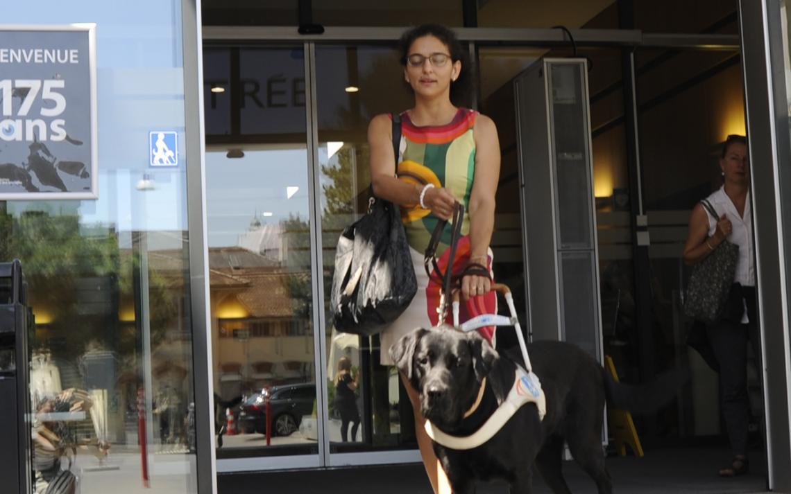 Image d'une personne aveugle avec son chien guide